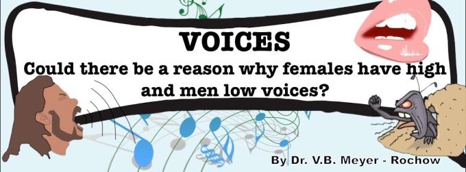 voices sound benno meyer roc how biology science